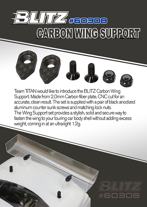 Carbon Wing Support